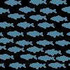 Damariscotta Mills Fish Ladder